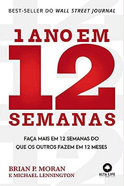 1 ANO EM 12 SEMANAS: FAÇA MAIS EM 12 SEMANAS DO QUE OS OUTROS FAZEM EM 12 MESES