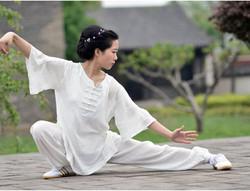 Tai Chi Chuan 太極拳