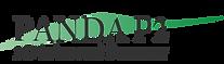 Logo Panda P2_pos-svart_Green.png