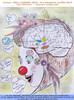Booste tes compétences émotionnelles et cognitives avec l'Art!