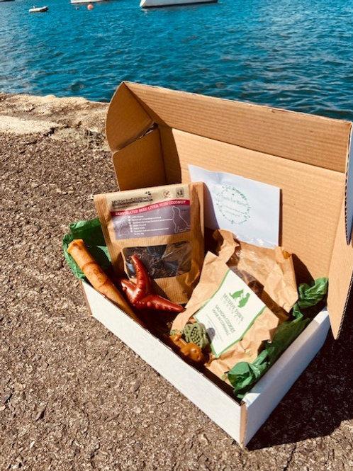 Treat Box - Standard