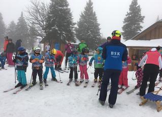 Kategorizacija skijaša