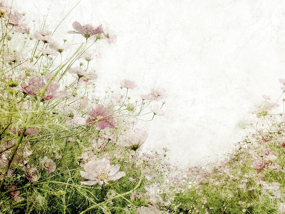 Light_09.jpg