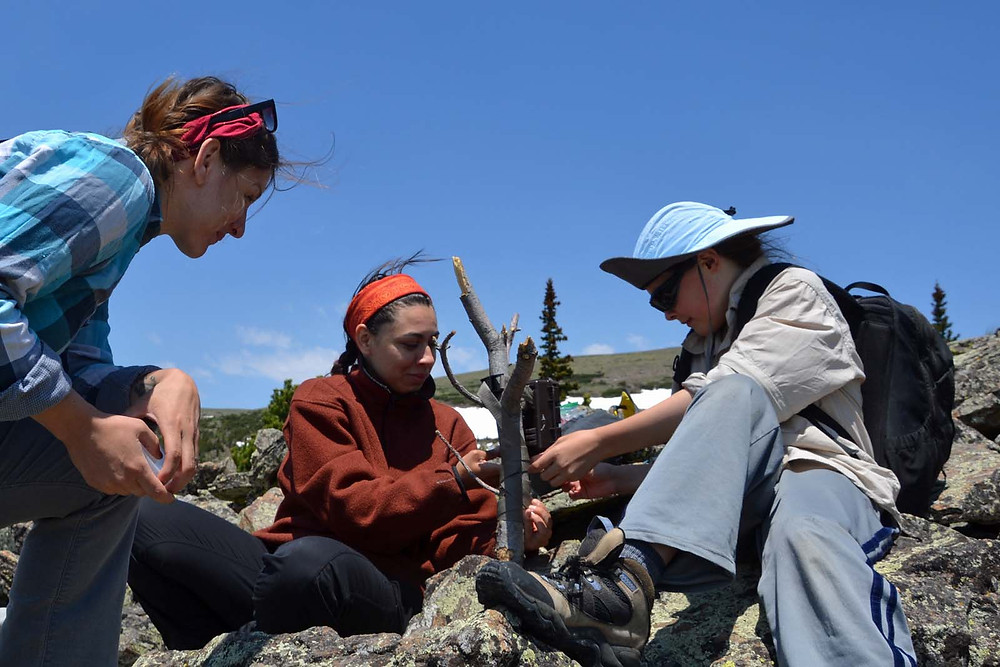 Haley (center) and Hilary (left) set up a camera trap with help from a rising 6th-grader (Max Van Lanen).