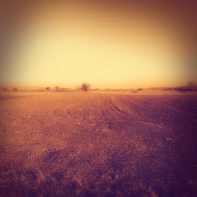 Le chemin des chaumes