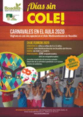cartel carnaval sin cole 2020.jpg