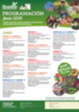 PROGRAMACIÓN_2020_JUNIO.jpg