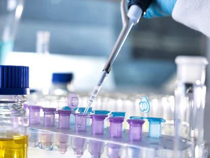 薬剤の農場における効果検証試験事例