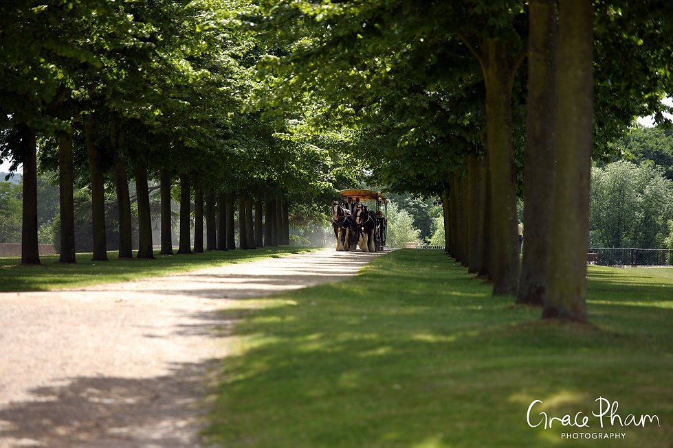 Hampton Court Palace Wedding Venue in Summer by Surrey Wedding Photographer 07