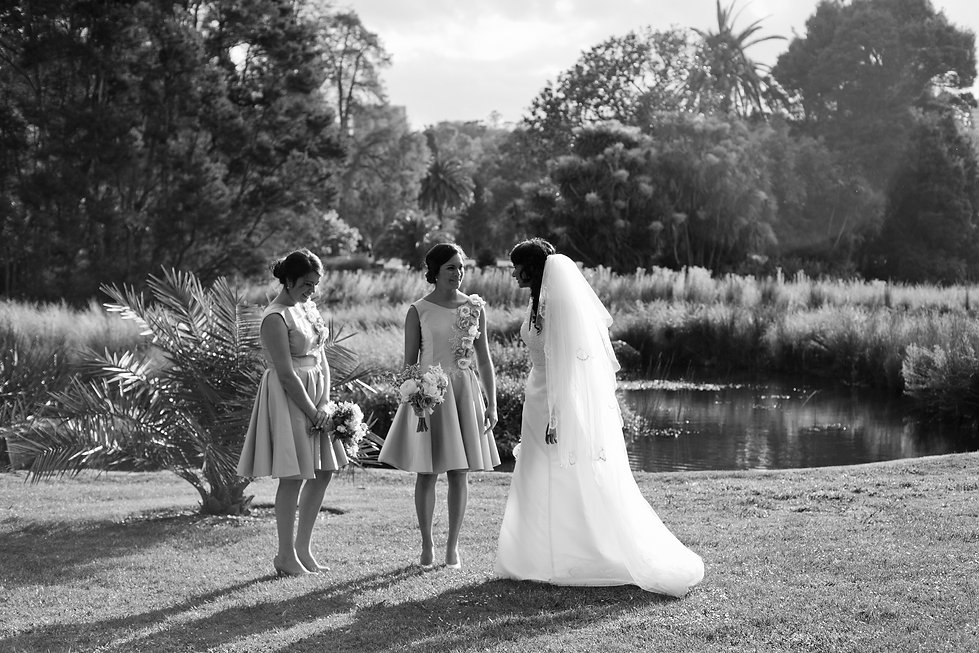bridal party at the botanical gardens, melbourne. Wedding Photographer.