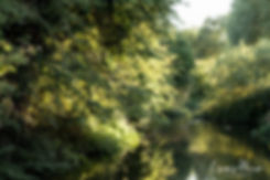 Tewin Bury Farm Hotel Wedding Photographer,Hertfordshire 03