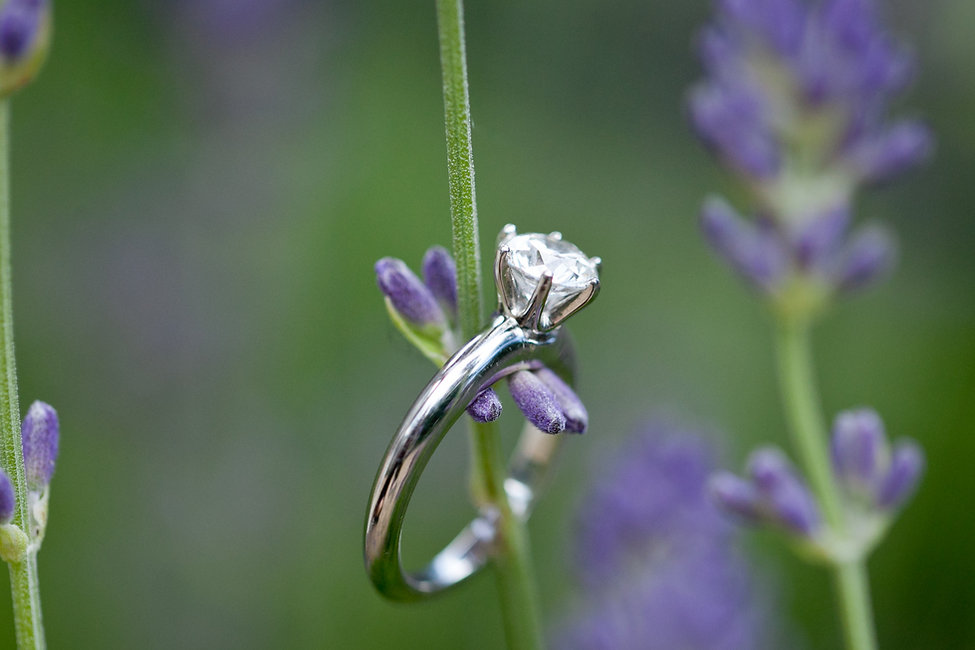 details shots of the engagement ring by Grace Pham Wedding Photography