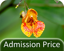 admissionprice.png