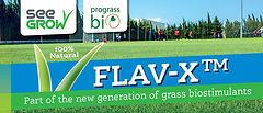 Flav X header.JPG