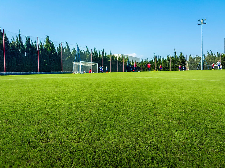 voetbalveld_1150346527_edited.jpg