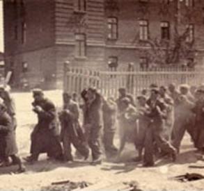 Ростовские партизаны