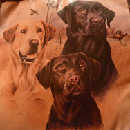 Dog Bedroom Blanket