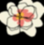 mmflower.png
