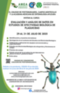 Cartel Curso EEB 2020.png