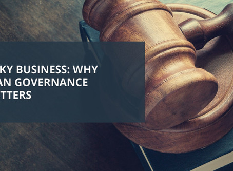 Blog Article: Risky Business - Why Plan Governance Matters