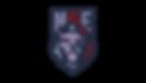 NSE-Logo-2-300x173.png