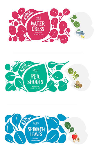 commercial food illustration M&S salad bags
