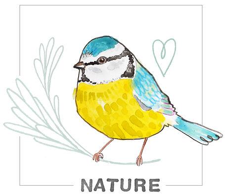 NATURE web.jpg