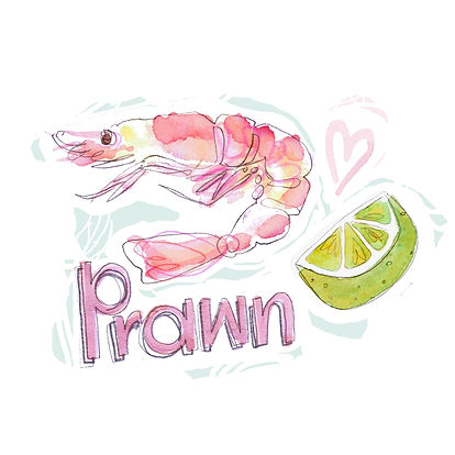 food illustration prawn seafood design