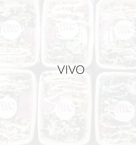 VIVO%20web_edited.jpg