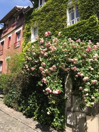 Les villas de Montsouris
