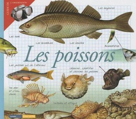 Les Poissons - Maria-Angels Julivert