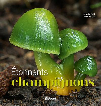 Etonnants Champignons  - Alain Bellocq