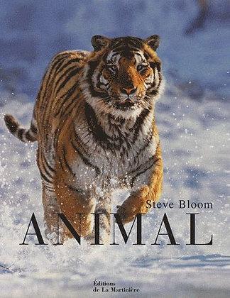 Animal - Steeve Bloom