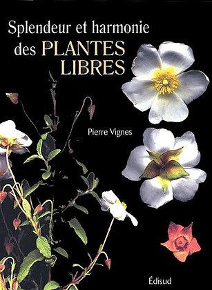 Splendeur Et Harmonie Des Plantes Libres Pierre Vignes