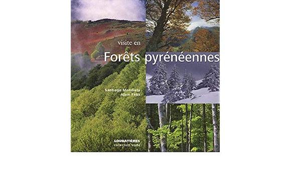 Visite En Forets Pyreneennes - Santiago Mendieta ; Alain Felix