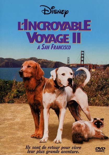L'Incroyable voyage 2 à San Francisco - D.R.Ellis - Walt Disney - DVD d'occasion