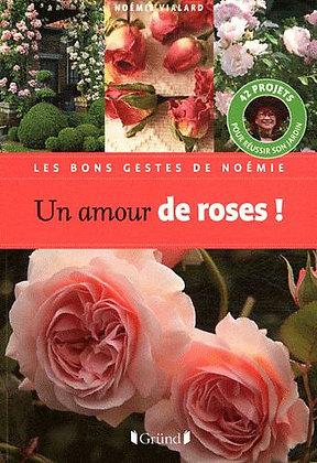 Un Amour De Roses  - Noémie Vialard