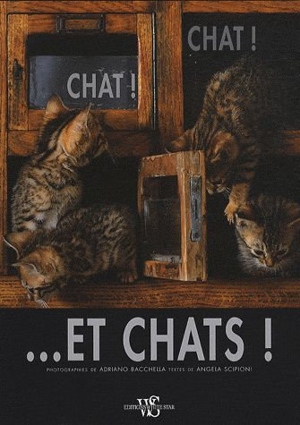 Chat ! Chat - Et Chats ! Angela Scipioni