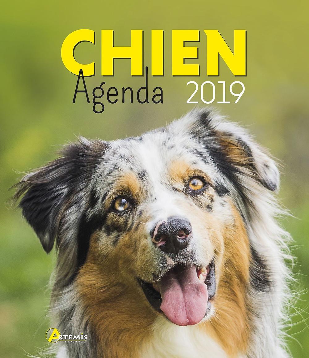 Agenda 2019 du chien