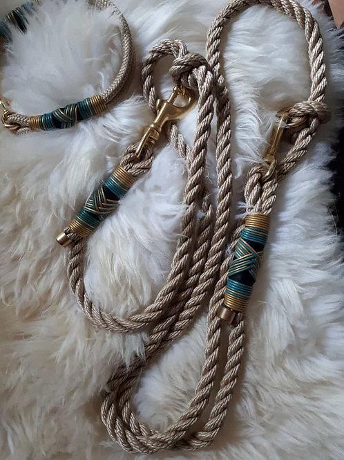 Halsband und Leine für den Modebewussten Hund