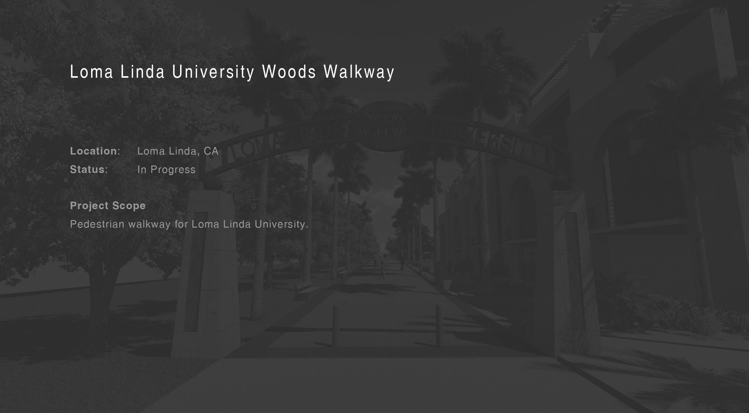 Woods Walkway.jpg