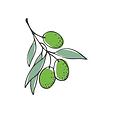SEB Olive.png