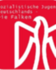 Falken Logo neu 2.png