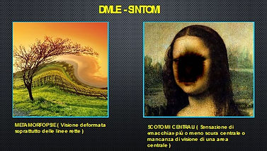 DMLE3.jpg