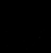 Black BB Logo .png