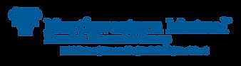 Blue Big Kosnick Financial Logo.png