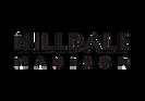 2020 Hilldale logo (1).png