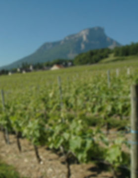 lescapade proche du vignoble savoyard