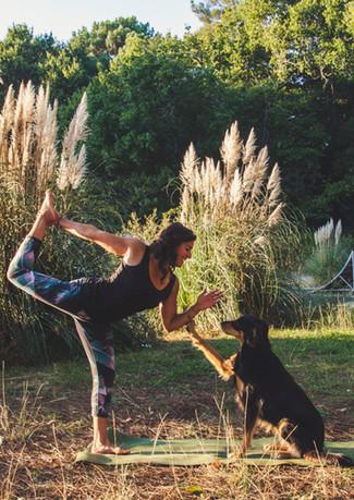 Cani Yoga - Doga Vieux Boucau