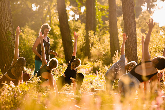 Feel Good Yoga Vieux Boucau forêt8